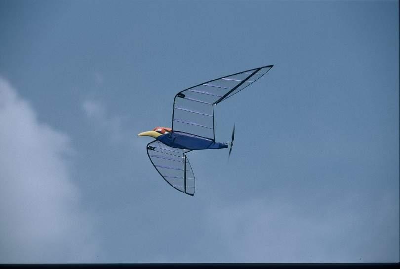 美国老头diy 的 薄板式扑翼机.组图